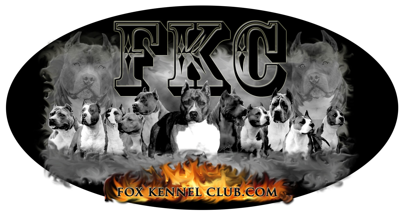 Proud Member of the Fox Kennel Club  quot American Pitbull Logo